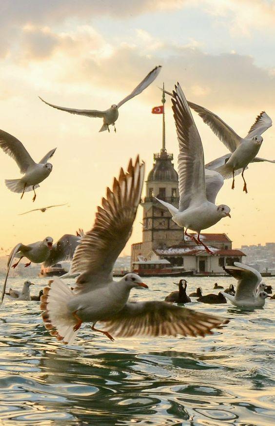 برج العذراء في اسطنبول