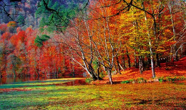 البحيرات السبع حديقة yedigoller