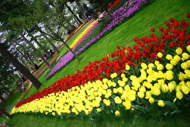 حدائق تركيا اسطنبول