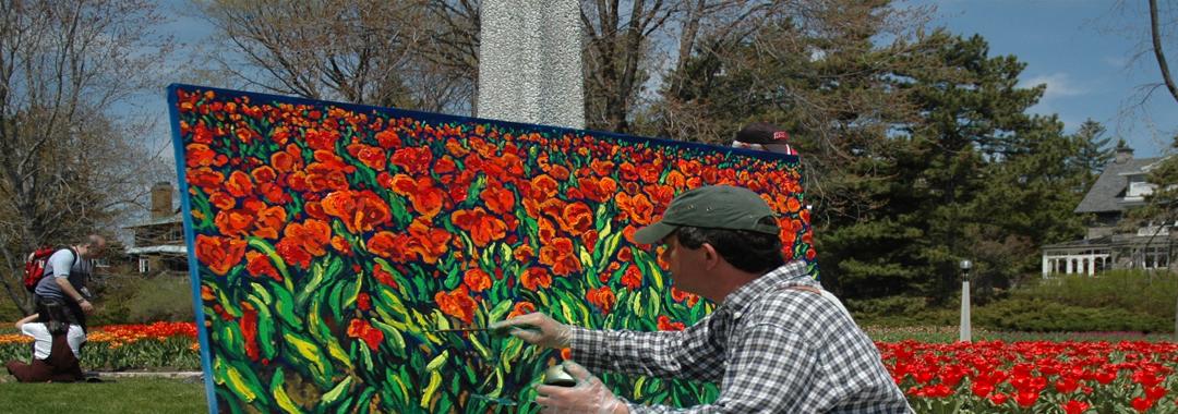 انشطة مهرجان زهرة التوليب