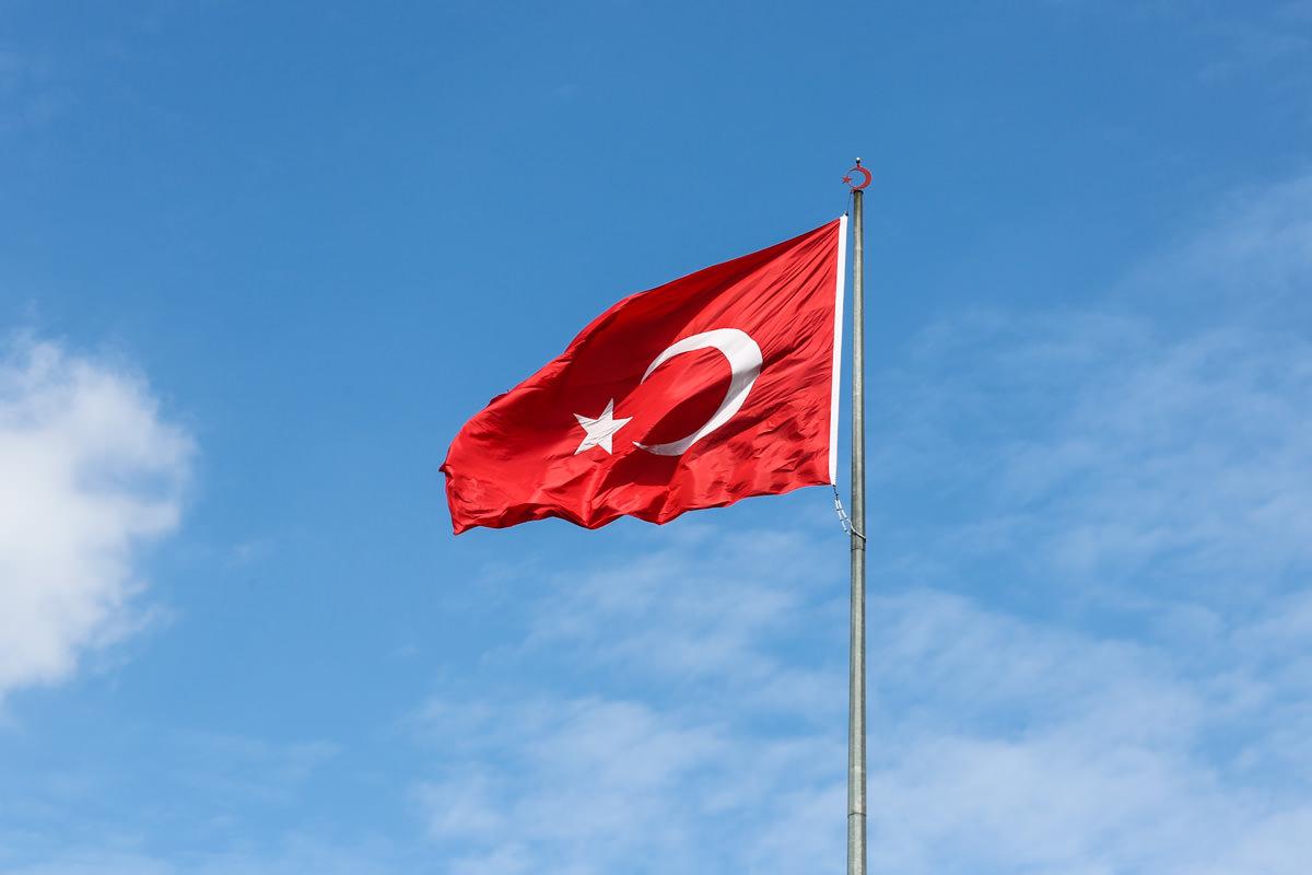 العلم التركى