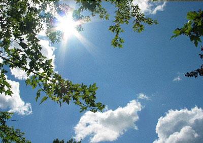 المناخ التركي