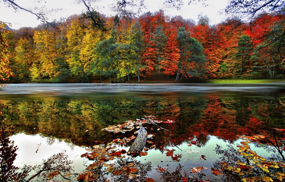 بحيرة أبانت