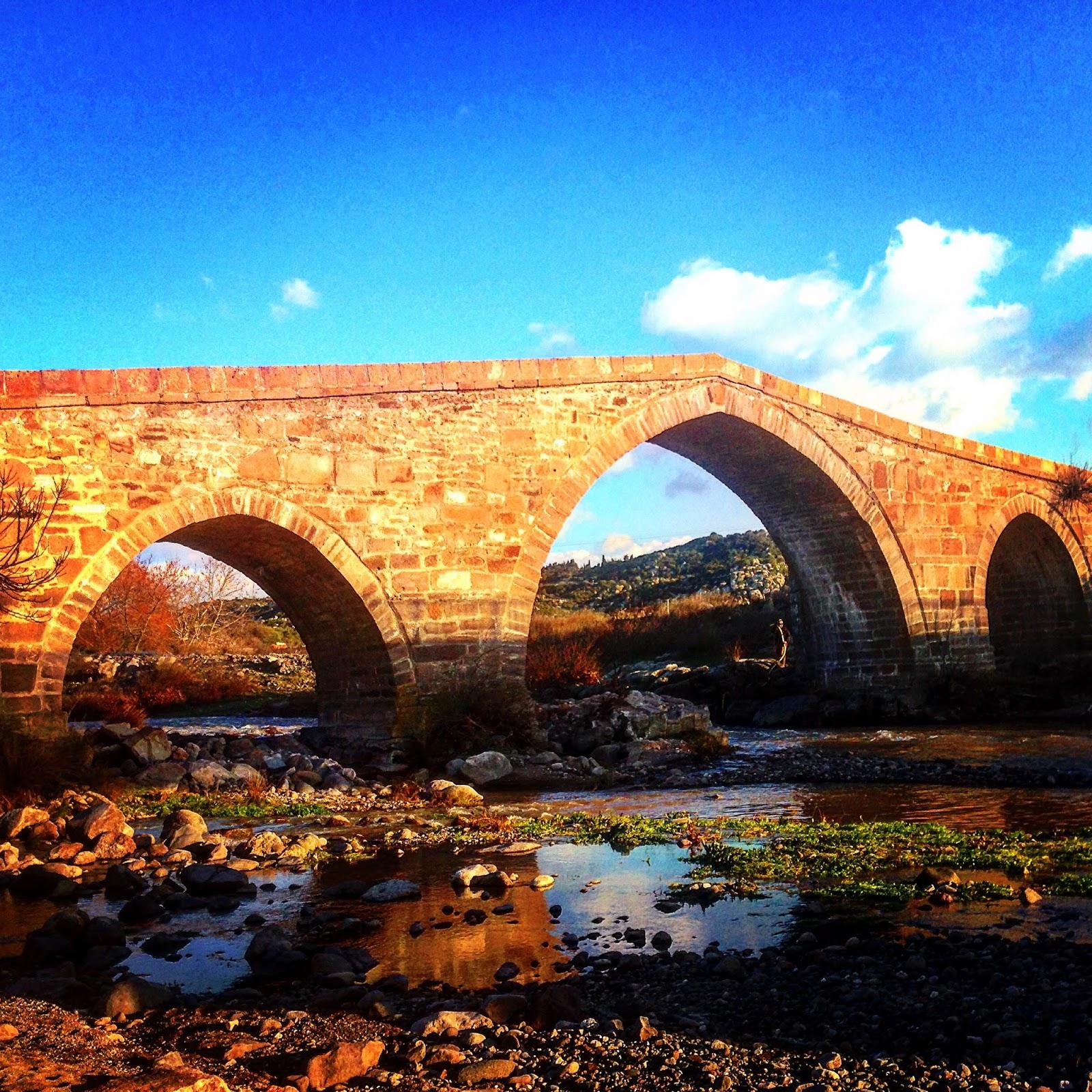 جسر قلعة أسوس